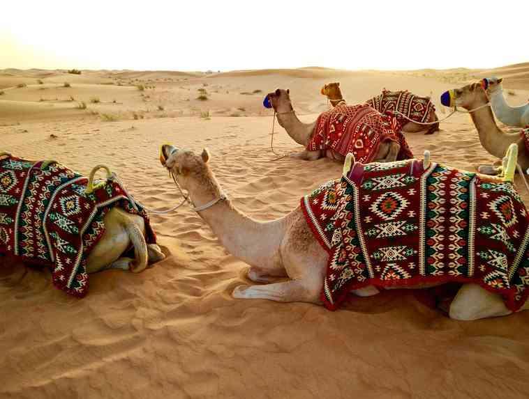 Cuáles son los requisitos para viajar a Dubái