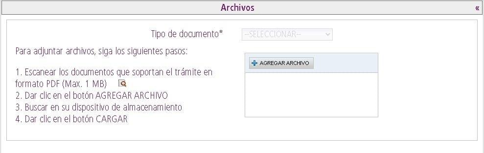 Subir archivo PDF de documento de identidad para movimientos migratorios y nacionalidad